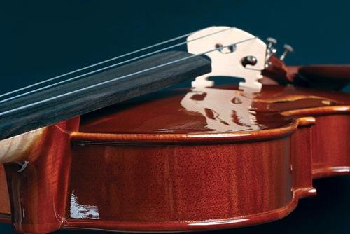 viola de arco eagle 4/4 va-150 estojo completo + kit