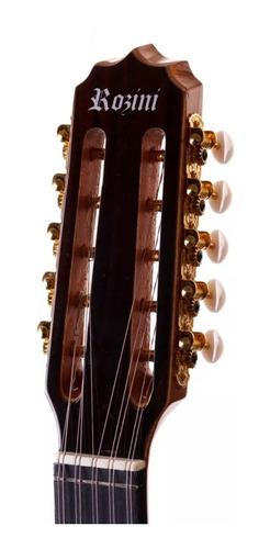 viola rozini rv112 elétrica profissional clássica brindes