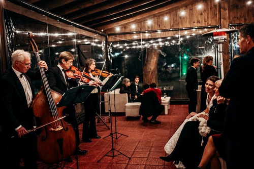 violines para bodas, recepciones y valses | strauss musik