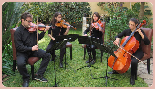 violines para eventos, fiestas, bodas, recepciones, valses.