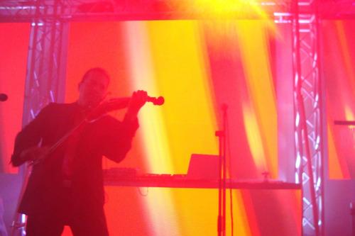 violinista para bodas, eventos y celebraciones especiales