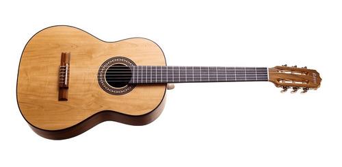 violão rozini iniciante acústico fosco com bag rx201acfi