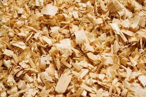 viruta de aserrin 100% pino sustituto de arena para gato