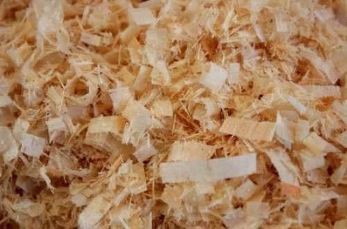 viruta de pino para hamster/cobayos/chinchillas