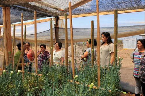 visita técnica para agricultura sustentable y exportación