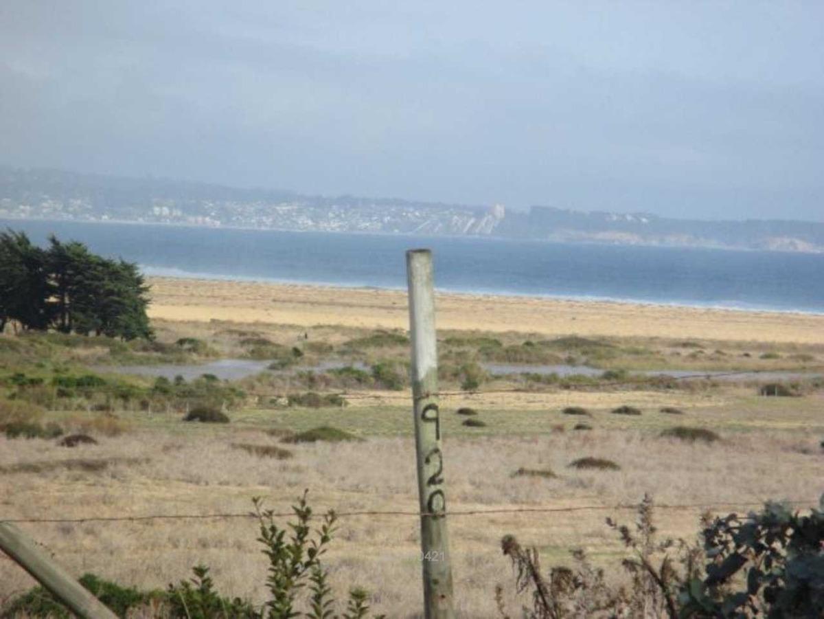 vista 360° al mar , estero, bosques en t