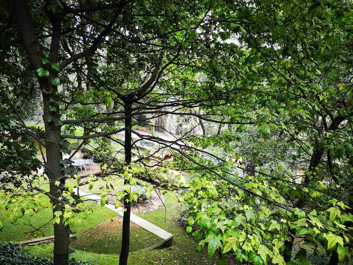 vista panoramica a area verde