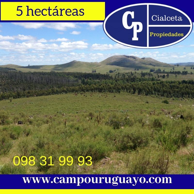 vistas de las sierras, chacras de 5 hectáreas, minas