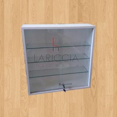 vitrina exibidora con cerradura para colgar,la mejor