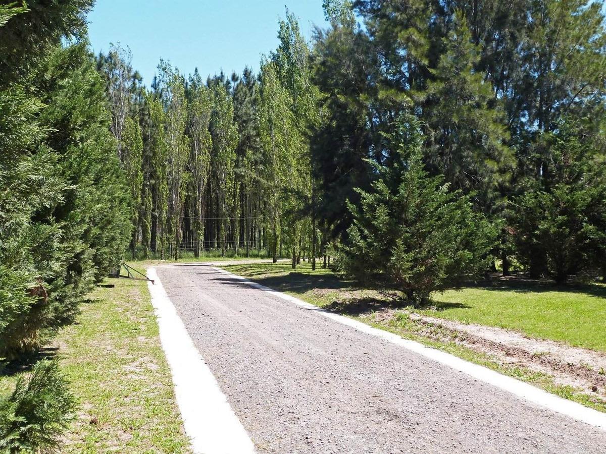 vivi tranquilo y seguro en pinares del sur - hermoso barrio cerrado !