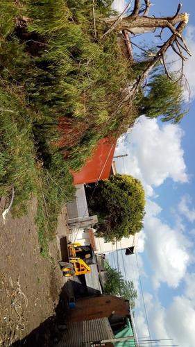 volquetes -limpieza de terreno.cel. 1540531601