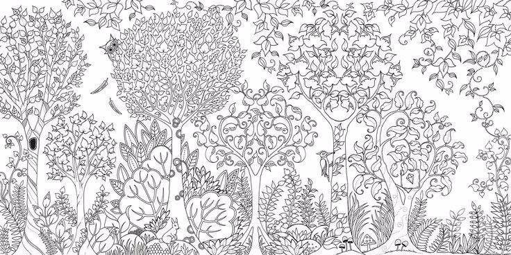 Vr Arte Para Colorear El Bosque Encantado 1274 32900 En