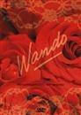 wando romântico brasileiro, sem vergonha dvd