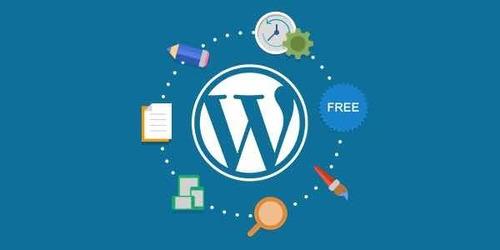 web design / wordpress / websites / blogs