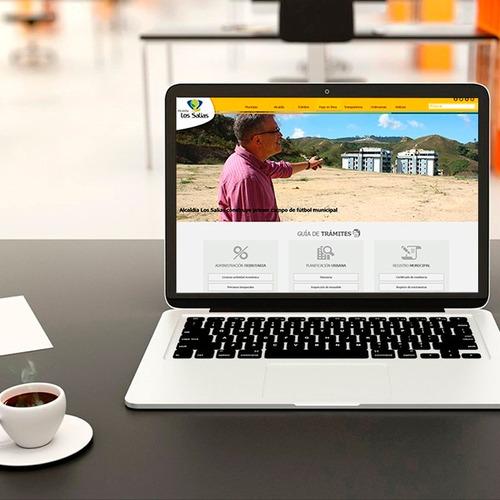 web profesional diseño
