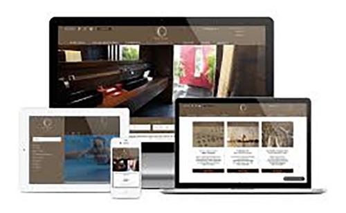 website profissional + aplicativo