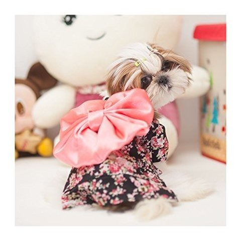 weeh perro disfraz halloween gato vestido de cosplay kimono