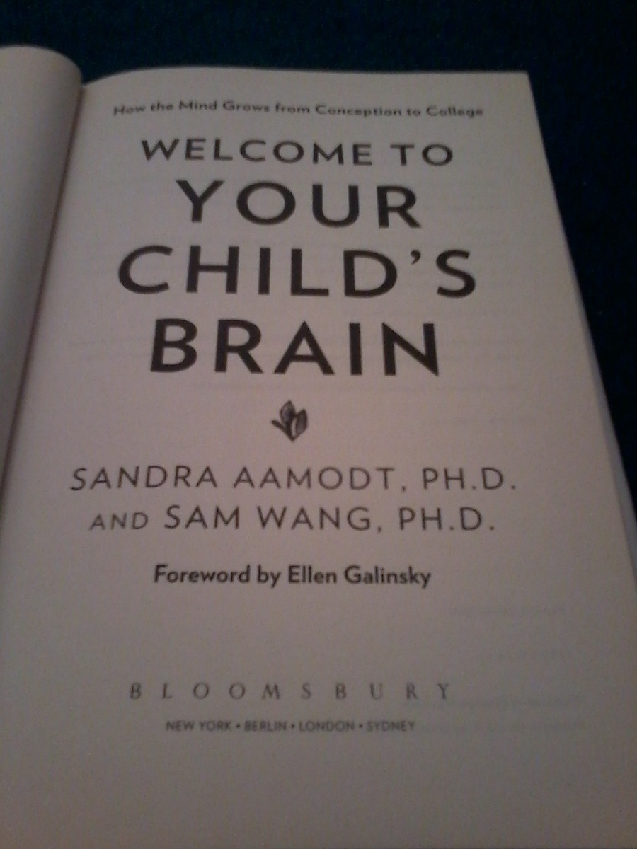 welcome to your childs brain how the mind grows from conception to college