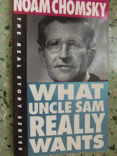 what uncle sam really wants noam chomsky en ingles