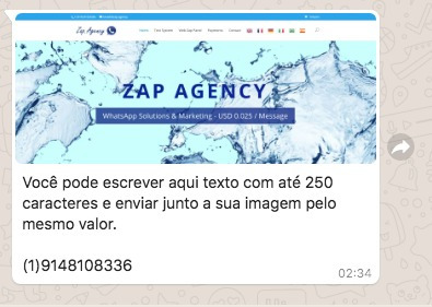 whatsapp marketing sem chip - via painel web