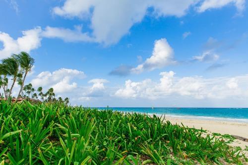 whitesands punta cana 2bd free shuttle to the beach