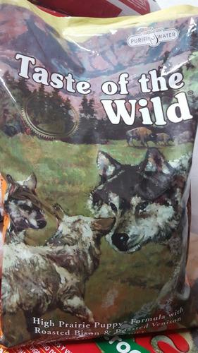 wild cachorro taste the