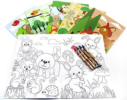 Woodland Animals - Juego De 12 Libros Para Colorear Con Dis ...