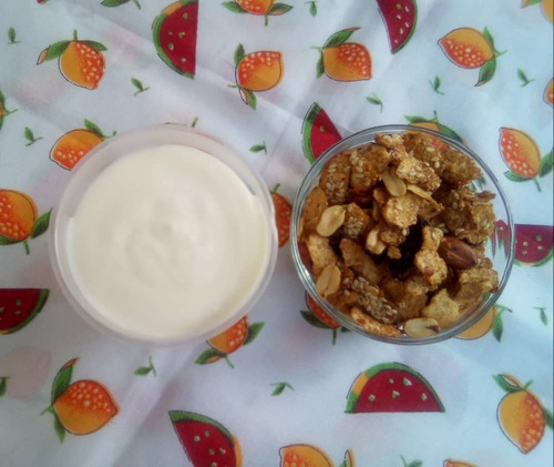 yogurt artesanal, 100% natural