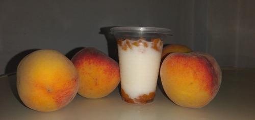yogurt firme casero.