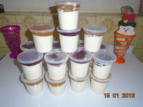 yogurt firme, yogurt griego y quesillo caceros- al mayor