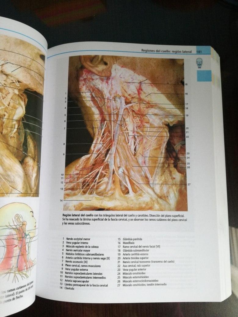 Yokochi Atlas De Anatomía 8°edición - $ 20.000 en Mercado Libre