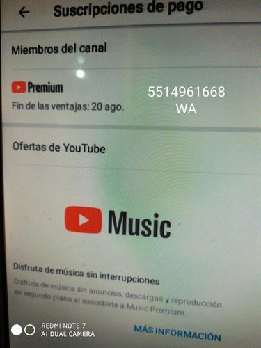youtube premium 6 meses