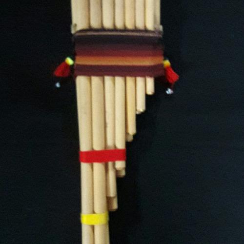 zampoñas y bajones bolivianos de concierto