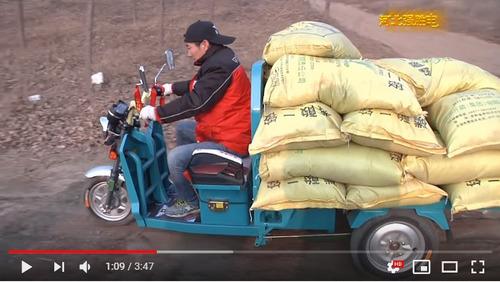zanella triciclo eléctrico cargo  -   viñolo /a