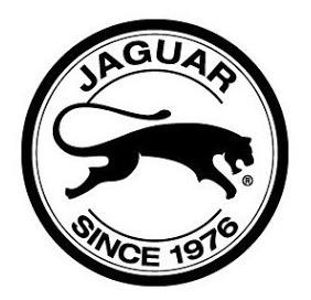 zapatilla jaguar urbanas originales art: 740