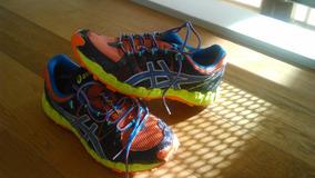 Zapatillas Asics Gel Fuji Trainer2