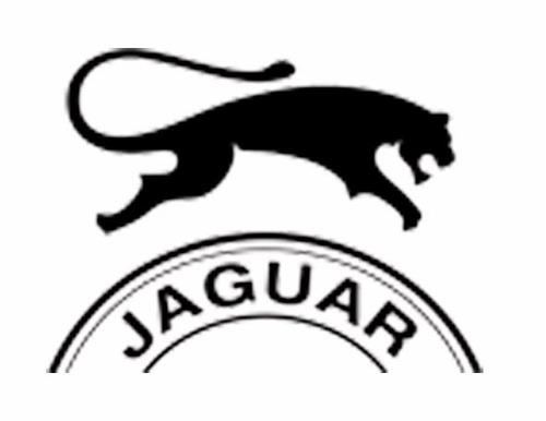 zapatillas jaguar lona puntera  art.320