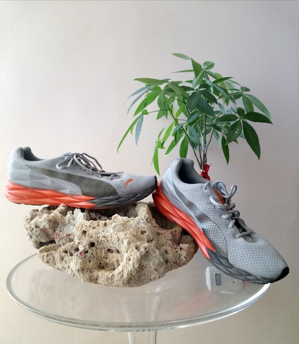 zapatos deportivos puma (usa)
