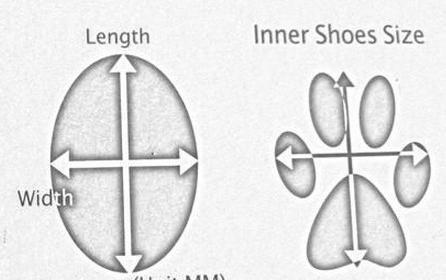 zapatos o botas perro doc dog (chiporro) mimall