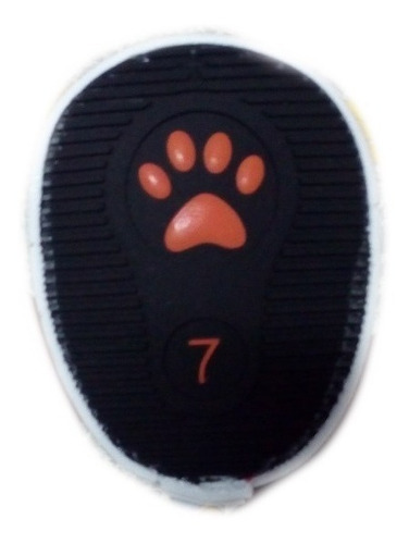 zapatos tenis para perros modelo converse