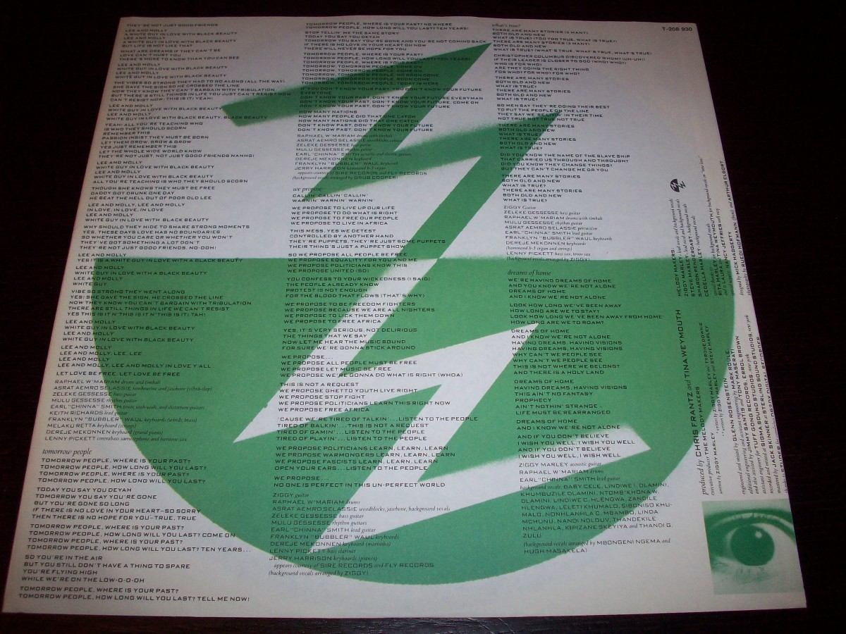 Ziggy Marley And The Melody Makers Conscious Party Lp