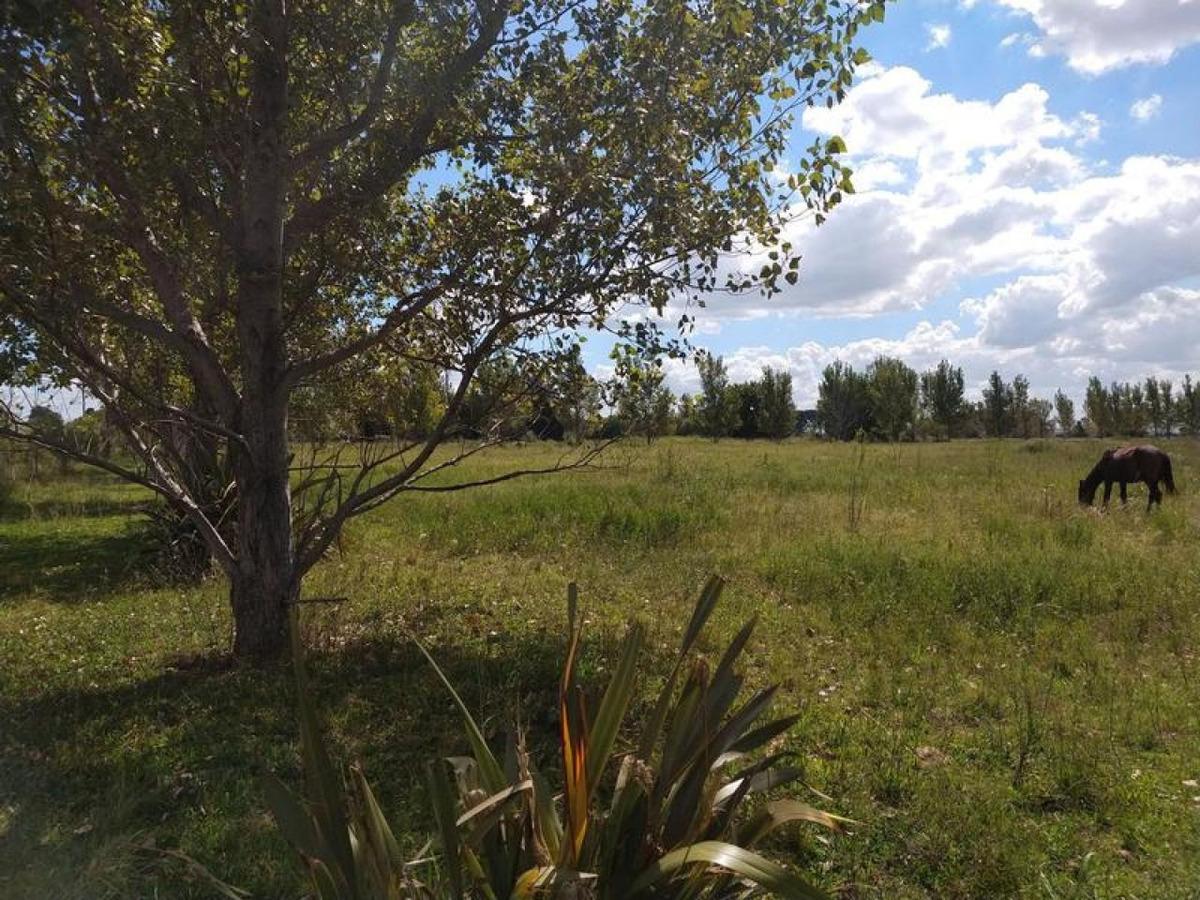 zona rural - granadero baigorria