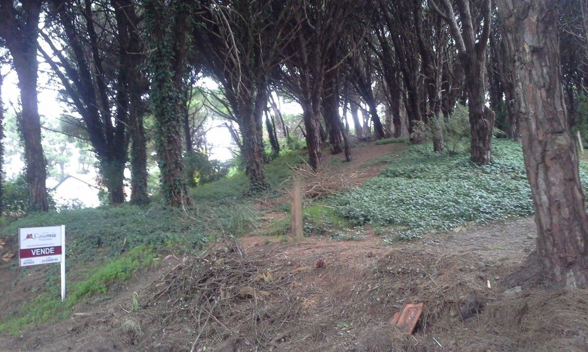zona viejo golf -lote unifamiliar