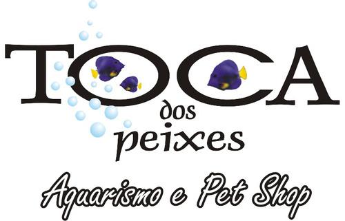 zoomed doca (deck) para tartarugas  td-10