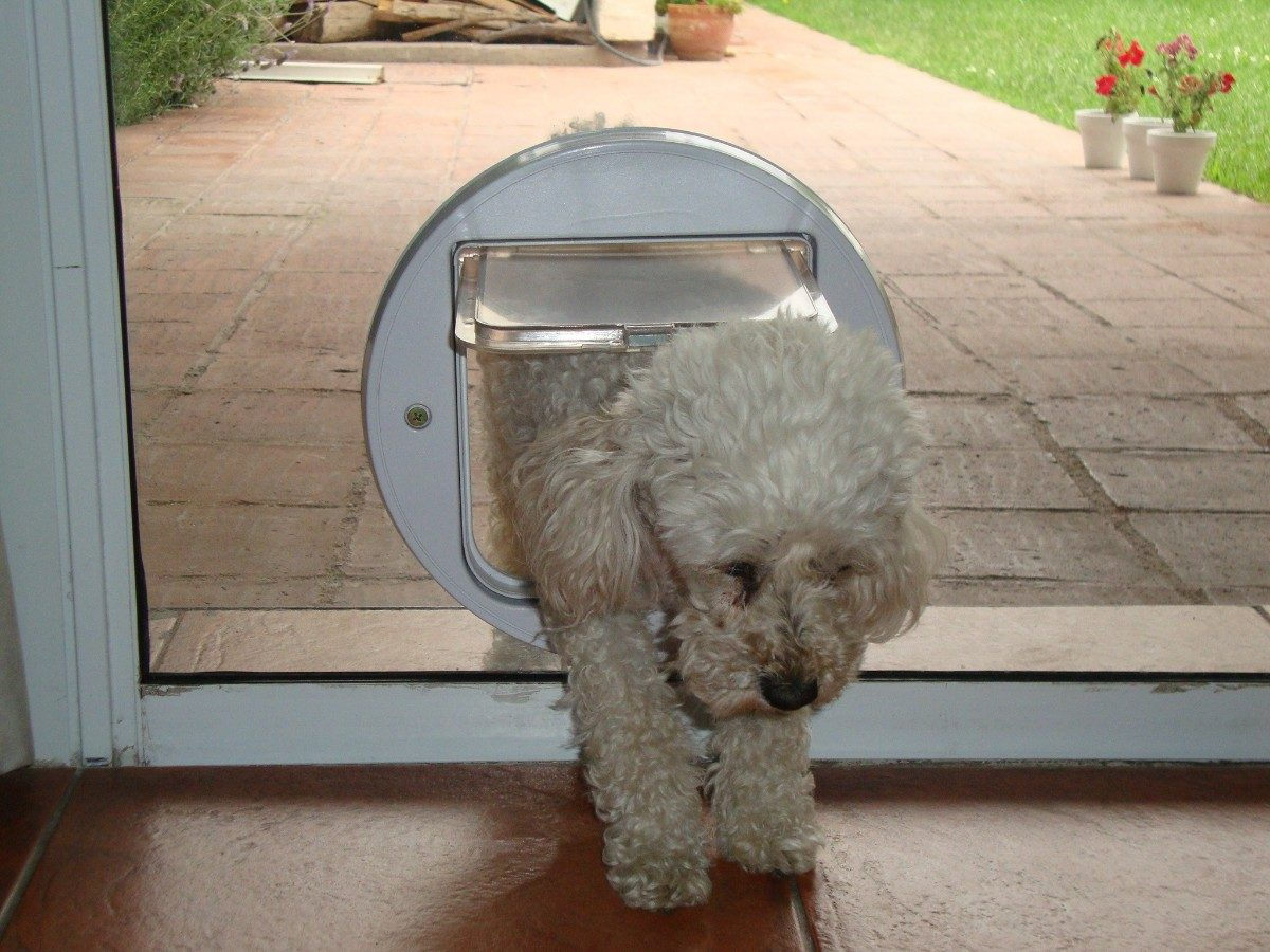 Puertas para affordable puerta de interior para vestidor for Puerta para perros